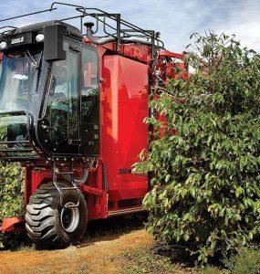 máquina de colheita de café