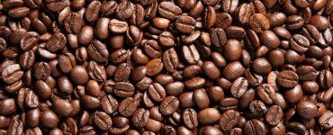 manejo-de-secdores-de-cafe