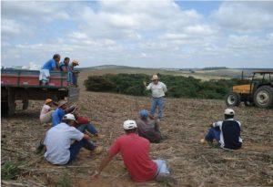 Treinamento da equipe de trabalho da empresa rural