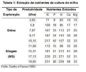 adubacao-nitrogenada-na-cultura-do-milho1