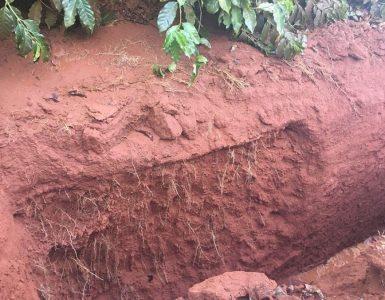 compactação do solo