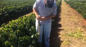 medir a compactação do solo