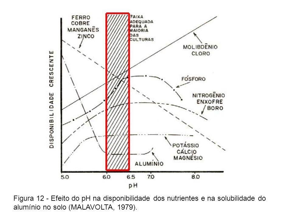 calcário
