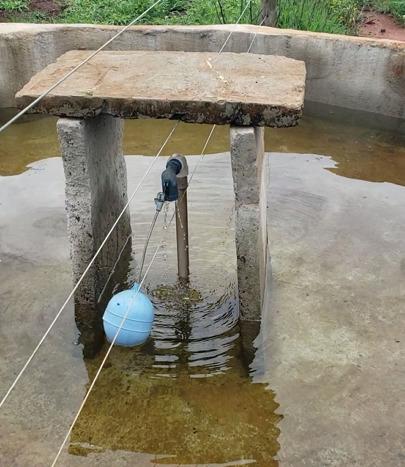 água na produção de bovinos