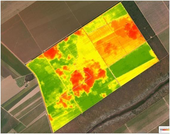 dados agrícolas