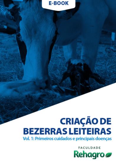 Criação de bezerras leiteiras